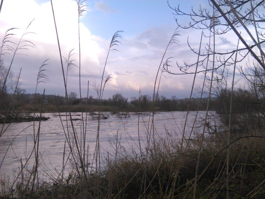 Il fiume Metauro